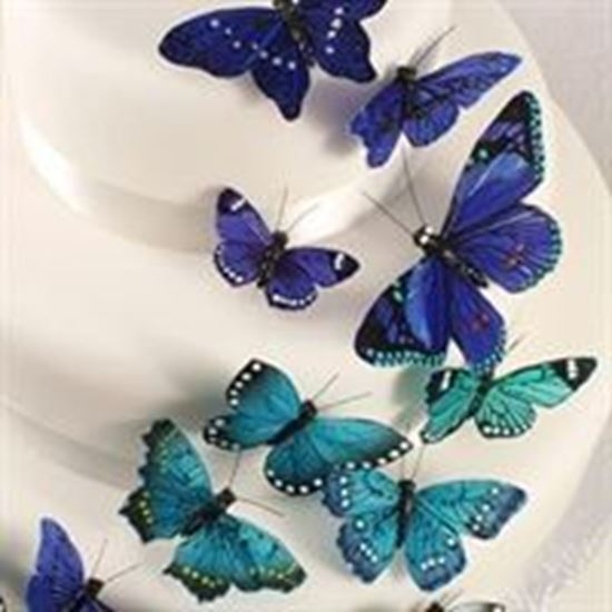 Picture of Butterfly Cake Decorations - Blue