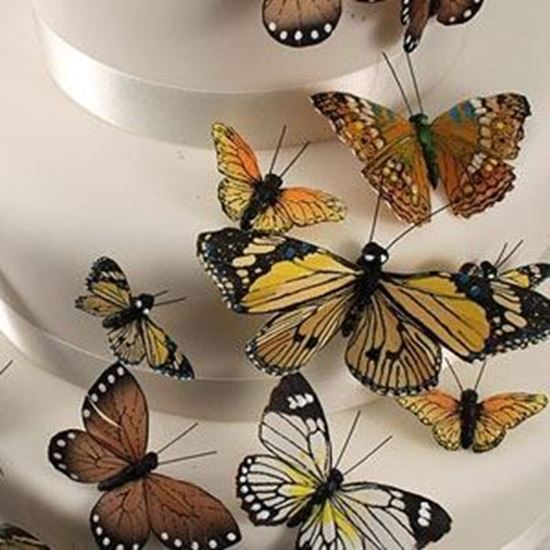 Picture of Butterfly Cake Decorations - Natural