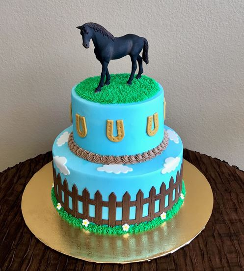 Picture of Horse Theme Cake